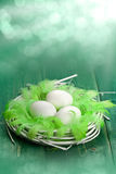 Three white eggs in the nest stock photo