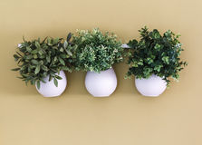 Three white flower pot with flowers hanging on the wall Royalty Free Stock Image