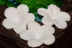 Fondant flowers on chocolate cake. Three white fondant flowers on chocolate cake royalty free stock photography