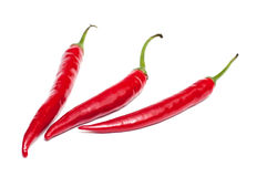 Three white isolated red peppers Royalty Free Stock Photos