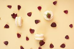 Three white macaroons cakes artfully laid out among the buds and. Petals of dark red burgundy roses on a yellow background. Copy space. Bakery, cooking, gifts Royalty Free Stock Photography