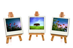 Three white painting canvas holding spring photos Stock Images