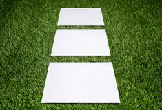 Three white sheets of paper on the grass Stock Photography
