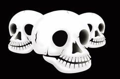 Three white skulls. On black background Stock Photos