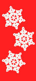 Three white snowflake Royalty Free Stock Photos