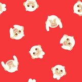 Three white wise monkeys seamless pattern, animal vector. On red backgroud Stock Photography