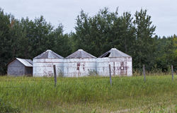 Three white wood bins. In a pasture with a fence in front and trees in the background Royalty Free Stock Photo