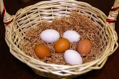 Six colorful eggs lie in a basket on a litter stock photo