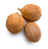 Three whole coconuts Stock Images