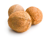 Three whole coconuts. On white background Royalty Free Stock Photography