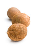 Three whole coconuts Royalty Free Stock Image