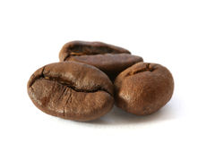 Three whole coffee beans detail Stock Photos