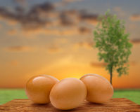 Three whole eggs Royalty Free Stock Image