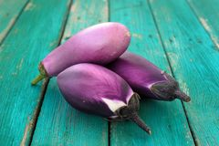 Three whole fresh organic violet aubergines on old turquoise tab Stock Images
