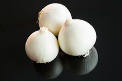 Three whole fresh raw white onions. On a reflective black background with copy space Royalty Free Stock Photo