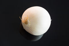 Three whole fresh raw white onions Royalty Free Stock Images