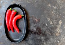 Three whole hot red peppers on a black oval tray, left of center, from above. Three whole hot red peppers on a black oval tray, left of center, on a gray royalty free stock photos