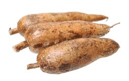 Three whole manioc Royalty Free Stock Images