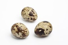 Three whole quail eggs Stock Photography