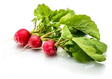 Red radish isolated Stock Photos