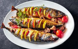 Three whole roasted mackerel on an oval dish. Close-up of three whole broiled mackerels with lemon, tomatoes, mushrooms, spices and herbs on a white oval dish stock photo