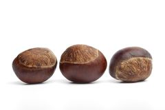 Three whole sweet Chestnuts  Stock Photo