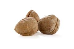 Three whole walnuts. On white Stock Image