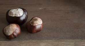 Three wild chestnuts. On a wooden table Stock Photo