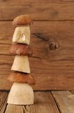 Three wild king bolete mushrooms mounting on each other on woode Royalty Free Stock Image