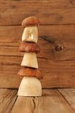 Three wild king bolete mushrooms standing on each other on woode Royalty Free Stock Images