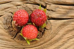 Three wild strawberries Fragaria viridis on cracked wooden board Stock Photography