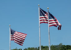 Three Wind Swept American Flags. Blowing in the wind on a clear summer day Stock Photography
