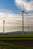 Three wind turbines of wind farm in the field. Three wind turbines of wind farm in the green field Royalty Free Stock Image