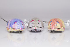 Three wind-up toy mice Royalty Free Stock Photography