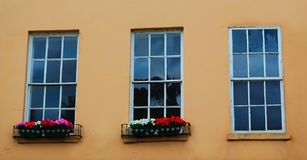 Three windows. In a yellow wall Stock Photography