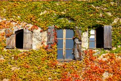 Three windows in Autumn stock photos