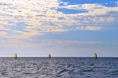 Three windsurfers in the Gulf of Mexico Royalty Free Stock Images