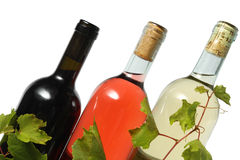 Three wine bottles. Red, rose and white wine bottles Royalty Free Stock Image