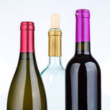 Three wine bottles isolated on white background Royalty Free Stock Photography