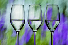 Three wine glasses Royalty Free Stock Image