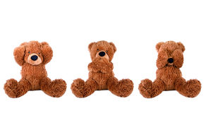 Three wise bear. See speak hear no evil Stock Photos
