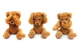 Three Wise Bears Royalty Free Stock Photos