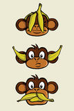Three wise monkeys. The three wise monkeys from the proverb See no evil, Hear no evil, Speak no evil. One monkeys has a banana peel in front of his eyes, one has Stock Images