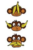 Three wise monkeys Stock Photography