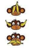 Three wise monkeys. See no evil, Hear no evil, Speak no evil, with bananas Stock Photography