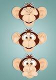 The three wise monkeys Royalty Free Stock Photos