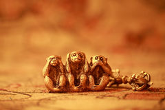 Three wise monkeys. Morality, See no Evil Hear no Evil Speak no Evil, Monkey, Three Objects, Ape Stock Photography