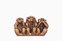 Three wise monkeys   on a white background. Morality, See no Evil Hear no Evil Speak no Evil, Monkey, Three Objects, Ape Royalty Free Stock Photo