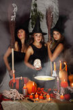 Three witch with a skull Royalty Free Stock Image