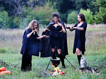Three witches conjure with potion. In the forest Stock Photo